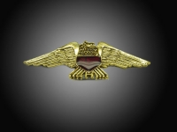 Small Eagle Emblem with Red Shield
